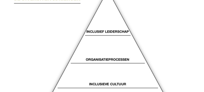 succesvolle-diversiteitsaanpak